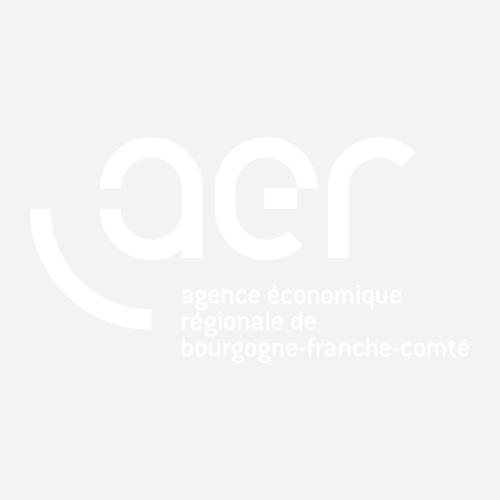 L'AER BFC vous adresse ses meilleurs vœux pour l'année 2018